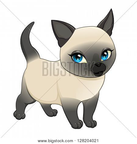 Cute cartoon siamese cat. Vector isolated character