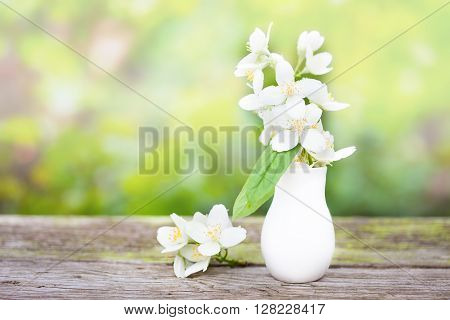 Delicate Jasmine in a small porcelain  vase on the boards