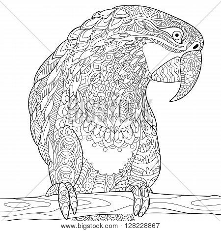 Zentangle stylized cartoon parrot macaw isolated on white background. Hand drawn sketch for adult antistress coloring page T-shirt emblem logo tattoo with doodle zentangle floral design elements