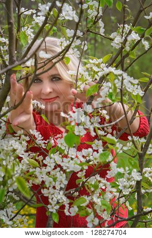 Beautiful blonde middle-aged is photographed between the branches of apple blossom