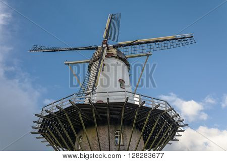 Blades rubella chicken old mill town in the Netherlands.