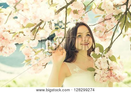 Small Smiling Girl In Blossom