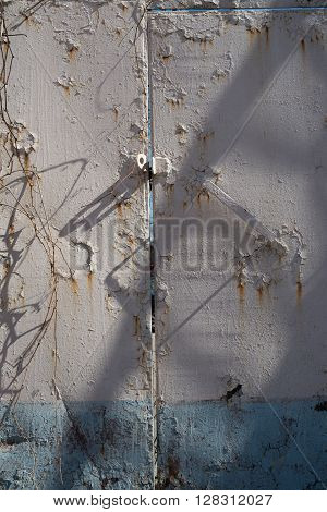 Rust rusty corroded oxidize colorful door used metal sheet plate pattern wallpaper crack grunge abstract aged background iron artistic wall flaking peeling paint.