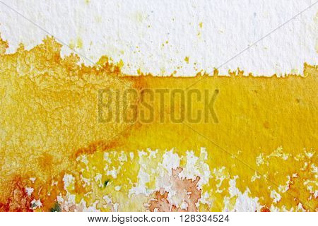 Yellow Watercolour Background 5