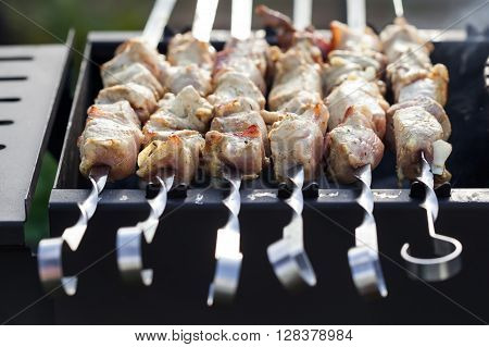 Skewered Marinated Raw Pork
