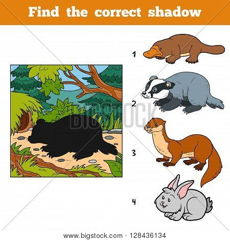 Find The Correct Shadow. Find Animal By Shadow