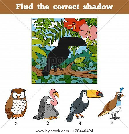 Find The Correct Shadow. Find Bird By Shadow