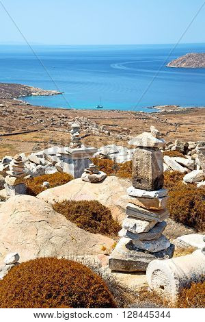 Bush   In Delos Greece The Historycal
