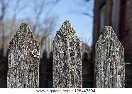 Old Weathered Fence