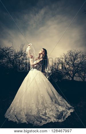 Beautiful Bride In Dusk