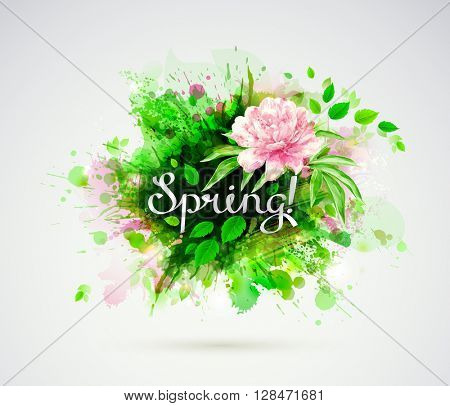 The spring composition with single flowering light pink peony and blots