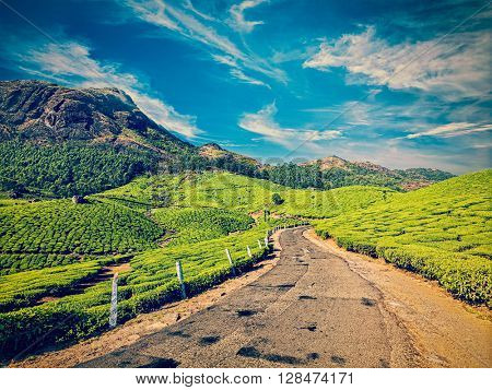 Travel Kerala India concept background - vintage retro effect filtered hipster style image of scenic road in green tea plantations, Munnar, Kerala state, India