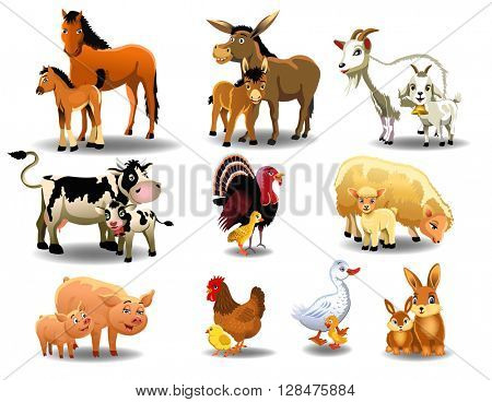 farm animals and their babies