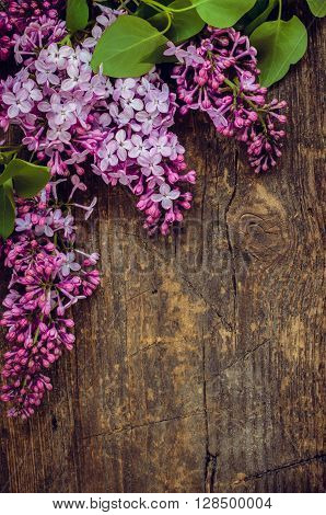 Lilac vertical background. Twig purple lilac on wooden board with place for text. Syringa vulgaris. Spring flower. Happy Mothers Day. Mother's Day greetings card. Mothers Day gift.
