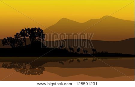 Silhouette of antelope in riverbank at the morning