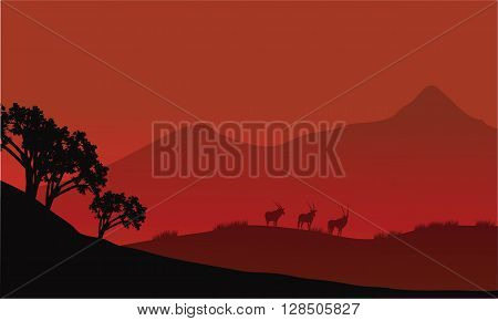 Antelope silhouette on the mountain with red backgrounds
