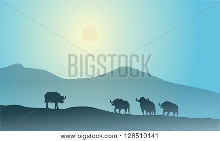 Bull silhouette in mountain scenery with blue backgrounds