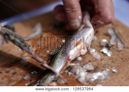 Fisherman Cleaning A Fish For Dinner