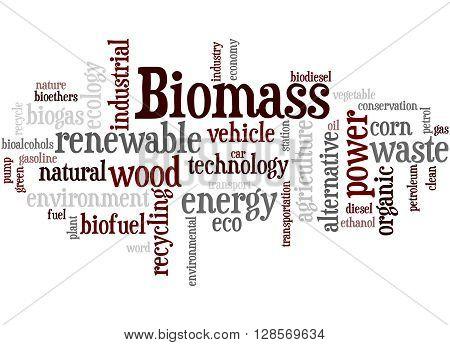 Biomass, Word Cloud Concept 3