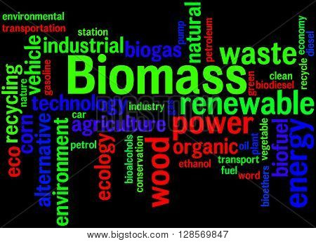 Biomass, Word Cloud Concept 6