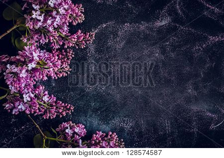 The lilac flowers on shool background modern style