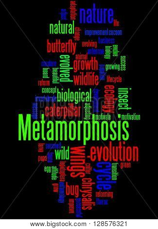 Metamorphosis, Word Cloud Concept 4