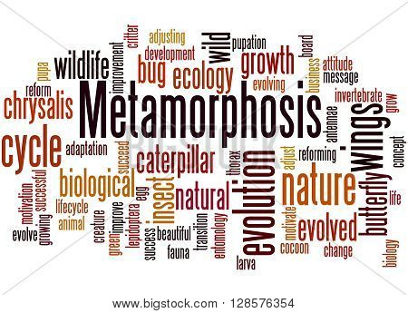Metamorphosis, Word Cloud Concept 6