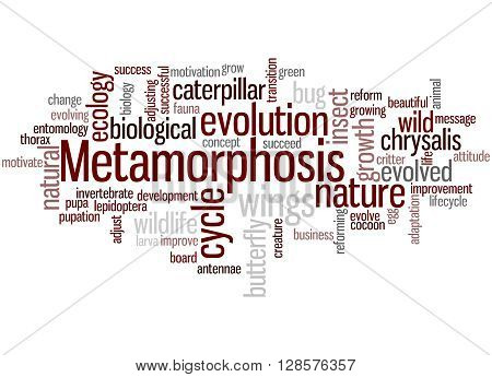Metamorphosis, Word Cloud Concept 7