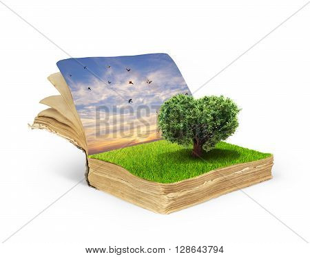 Concept of magic book covered with grass with tree in the form of heart isolated on white background.Tree of life. Tree of love.