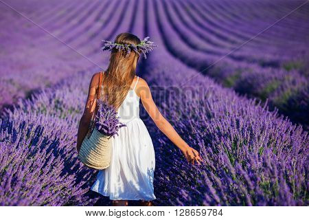 Back view of beautiful young girl in the lavander fields in Valensole. Provence, France.