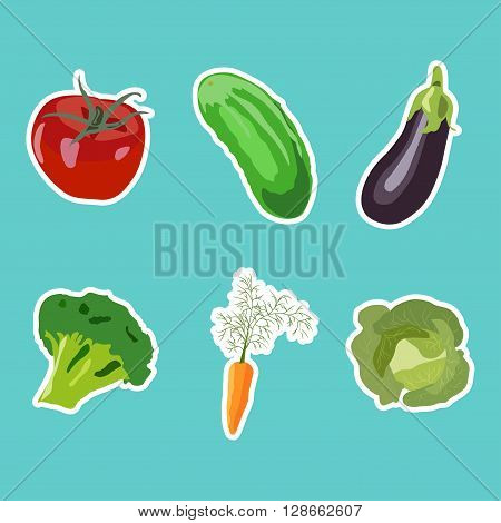 Set of vector vegetables stockers in flat style on blue background.