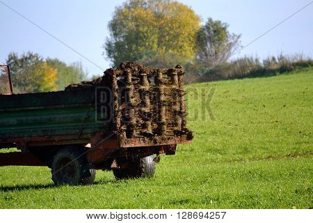 Manure spreader on field road - agriculture