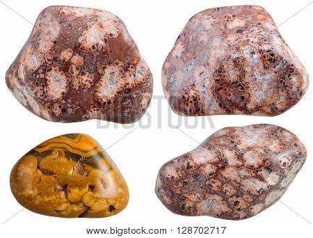 Set Of Various Leopard Skin Jasper Gemstones
