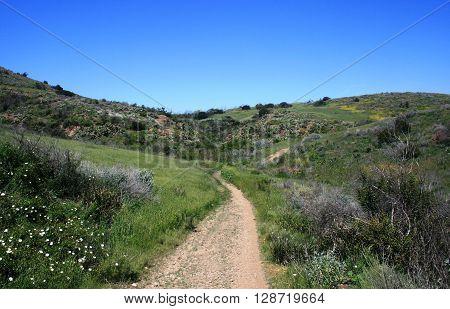 Hiking trail through a meadow, Thousand Oaks, CA