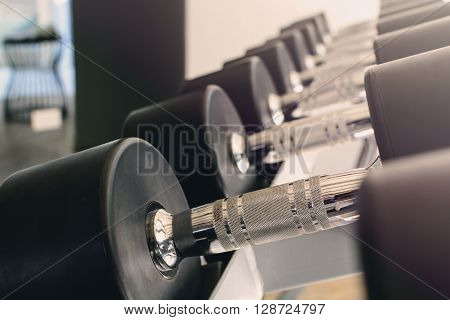 Close up row of dumbbells in modern sports club