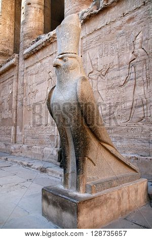 Horus, the hawk God statue, Edfu Temple, Egypt