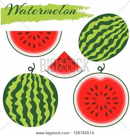Set of fresh ripe watermelon. Single watermelon half a watermelon a slice of watermelon. Summer concept. Watermelon vector illustration