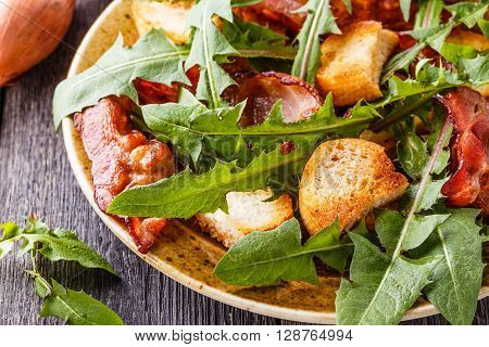 Fresh dandelion salad with fried bacon and garlic croutons rustic style selective focus. ** Note: Visible grain at 100%, best at smaller sizes