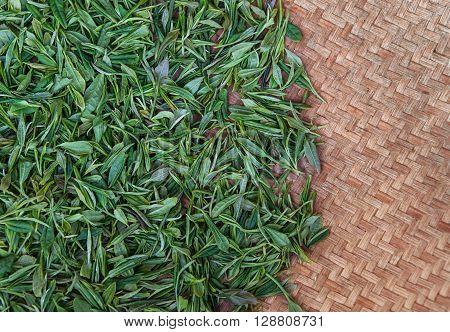 tea leaves in the weaving basket,organic tea