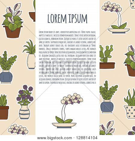 Vector illustration with cartoon hand drawn homeplant background: cactus rose orchid succulent. Interior home design. Vector background with cartoon homeplant objects. Cute hand drawn flowers