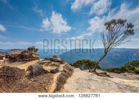 Rock near Wentworth Falls in the Blue Mountains New South Wales Australia