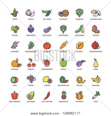 Fruit and vegetables line vector icons with flat elements. Vegetable food, element fruit, sign fruit and vegetables set, fruit and vegetables illustration