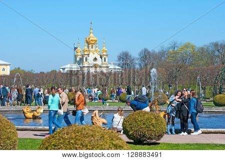 PETERHOF, SAINT-PETERSBURG, RUSSIA - MAY 8, 2016: The Upper Garden. Tourists take pictures near Mezheumniy (Indefinite) Fountain. On the background is The Palace Church of Saints Peter and Paul