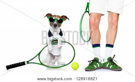 Dog Tennis Ball Player