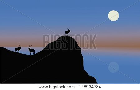 Silhouette of antelope in cliff with blue backgrounds