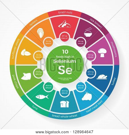 10 foods high in Selenium. Nutrition infographics. Healthy lifestyle and diet vector illustration with food icons.