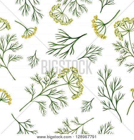Watercolor seamless pattern hand drawn herb dill. Watercolor leaves and branches of dill on a white background. Herbs for packaging design, cards, postcards and book illustrations.