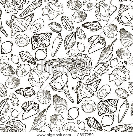 Collection of  seashells drawn in line art style on white background. Ocean seamless vector pattern. Coloring page design.