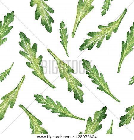 Watercolor seamless pattern hand drawn herb arugula. Watercolor leaves and branches of arugula on a white background. Herbs for packaging design, cards, postcards and book illustrations.