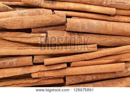 Background of Raw Organic Cinnamon sticks (Cinnamomum verum).